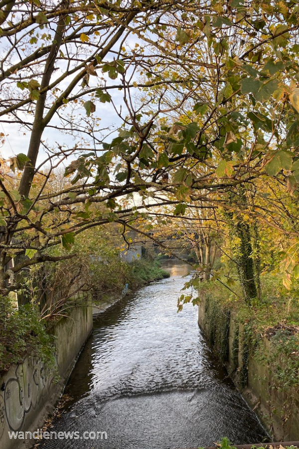 River Wandle Walk (1)